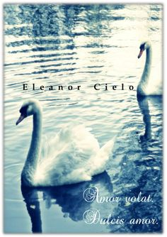 'Amor volat. Dulcis amor' de Eleanor Cielo.  Homoerótica, gay, yaoi, LGBTI, BL, literatura, homoerotismo.