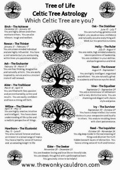 Which Celtic Tree are You? Which Celtic Tree are You?You can find Celtic tree and more on our website.Which Celtic Tree are You? Which Celtic Tree are You? Celtic Astrology, Celtic Zodiac Signs, Astrology Numerology, Astrology Signs, Celtic Tree Of Life, Tree Of Life Symbol, Celtic Art, Celtic Crafts, Celtic Designs