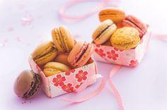 Vive les macarons ! Chocolat, vanille, cafe, framboise
