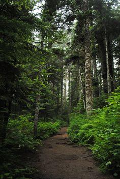 Denny Creek Trail in North Bend, Washington