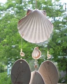 Wind Chime: White Irish Deep scallop shell by RosemarysHomestead