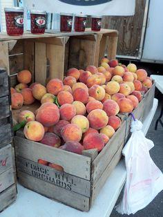 Peach Baskets. Photo by Frederick Meekins