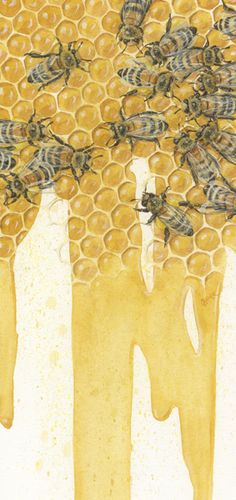 """Bees"" watercolor patining by Beatrice Bork (circa 2011)"