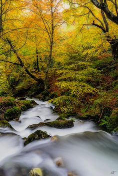 River flow by Ekaitz Arbigano ~ Araya, Basque Country, Spain* Beautiful Landscapes, Beautiful Images, Amazing Photography, Better Photography, Fall Pictures, Landscape Pictures, Best Photographers, Nature Photos, Mother Earth