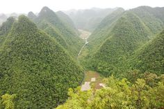 Top 10 Beautiful Forests In China