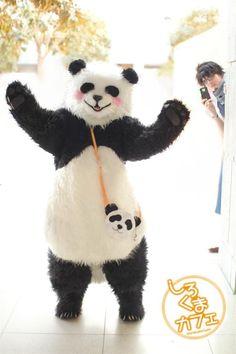 polar bear cafe. So cute! Rin Rin and Panda-kun.