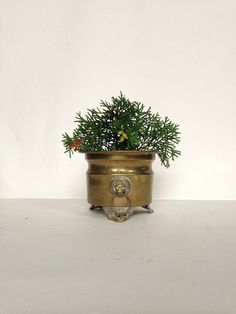 Vintage Brass Lion's Head Footed Planter  Made in by OneDecember, 22.00