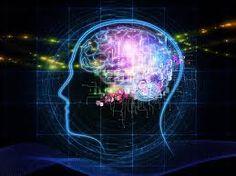 CURIOSIDADES SOBRE O CÉREBRO:  Os homens conseguem processar primeiro a informação do lado esquerdo. Por sua vez, as mulheres fazem essa tarefa com os dois lados do cérebro simultaneamente. -  #Cérebro #Neurociência