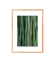 abstract bamboo greens blues tranquil calming spa decor Fine Art Photography, Calming, Blue Green, Bamboo, Blues, Spa, Etsy Shop, Display, Abstract