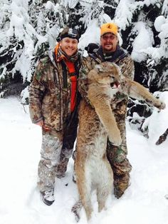 Kid Rock Angers Some Fans With Hunting Photo Featuring Dead Cougar.  If only more people where educated on the benefits of hunting large predators like lions and wolves to help balance the predator/prey relationship.  Unfortunately this Yahoo article seems to focus much of its time on the anti hunters comments.