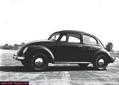 Volkswagen Standard - 1954