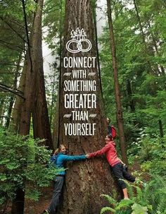 Image result for many woman hugs a tree