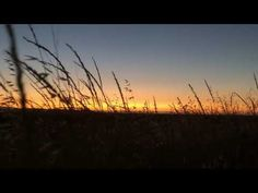 YouTube California Sunset, Before Sunset, Celestial, World, Youtube, Outdoor, Outdoors, The World, Outdoor Games