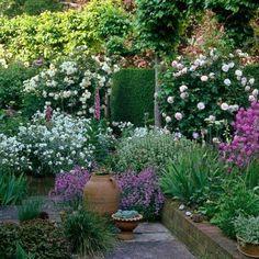 95 Beautiful Front Yard Cottage Garden Landscaping Ideas - Image 32 of 95 Landscaping Plants, Front Yard Landscaping, Landscaping Ideas, Landscape Design, Garden Design, Container Gardening Vegetables, Plantation, Garden Planters, Fence Garden