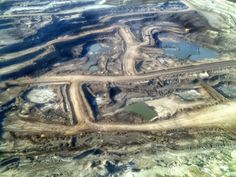 Despite the use of cannons, noise machines and scarecrows, tar sands tailings ponds are still killing birds in Canada.