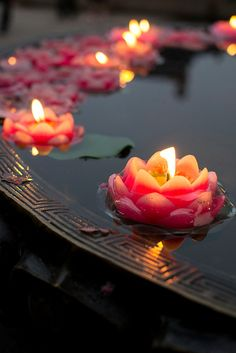 Floating Candles, Nanjing, China