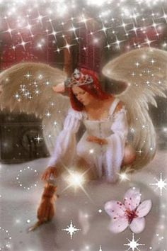 And kitties and every other animal go to Heaven. http://www.angelsgreencleaning.net
