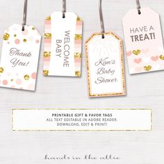 Pirate Party Tags Editable Template Printable Gift Tags Pirate