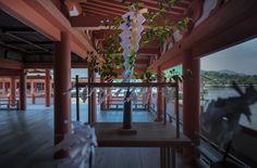 https://flic.kr/p/t76gP9 | 厳島神社・大麻(おおぬさ)