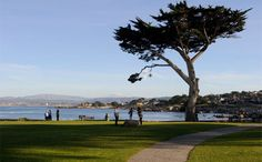 Lover's Point in Pacific Grove, CA. Home of Why Not Books. www.whynotbooks.com