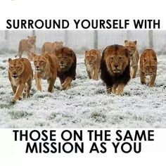 Sooo soo true! Hard to become who you want and teach your goals when you surround yourself with those who have no dreams or goals and aren't on the same page as you. Surround yourself with those who lift you higher!