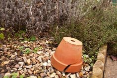 Don't Throw It Away! 3 Things You Can Do With Your Broken Pots and Planters