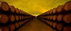 Esporão eleito pela Wine&Spirits como uma das 100 melhores adegas do Mundo | ShoppingSpirit