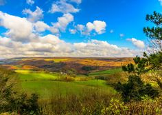 #MyPicturePost: Paradise view, #Fadmoor, North York Moors, by Yorkshire Post reader Ian Thomas.