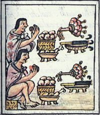 At Aztec feasts guests were presented with cylindrical pipes full of tobacco, Florentine Codex, late 16th century