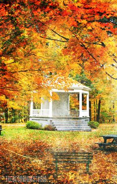 Colorful autumn leaves, white gazebo, photography, fall, print in orange, red, yellow and green of New England
