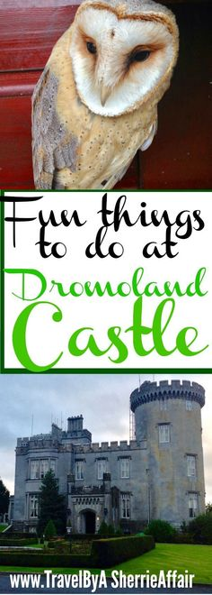 So much to do at the Dromoland Castle in Ireland! Lots of activities and exploring.  Golf, clay shooting, archery, falconry just to name a few! #Ireland #Castle #Golf #Archery #Falconry #Clayshooting