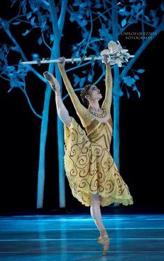 "© Carlos Quezada ""A Midsummer Night´s Dream"", Compañía Nacional de Danza de México – National Dance Company of Mexico #godatu #dance"