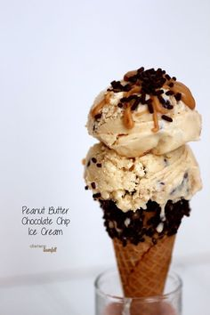 Homemade Peanut Butter Chocolate Chip Ice Cream. Perfect for your peanut butter lover. from #dietersdownfall.com