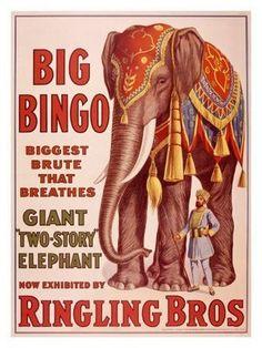 Big Bingo - vintage circus poster