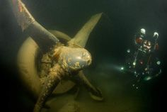 B-29 rests at a depth of about 115 feet in Lake Mead