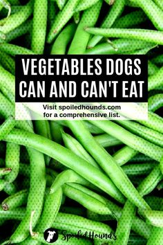 #comprehensive #vegetables #dogtreats #doglover #dogfood #spoiled #hounds #your #pets #cant #keep #dogs #list #find #... List Of Vegetables, Dog Treats, Green Beans, Dog Food Recipes, Dog Lovers, Pets, List Of Veggies, Doggie Treats, Dog Recipes