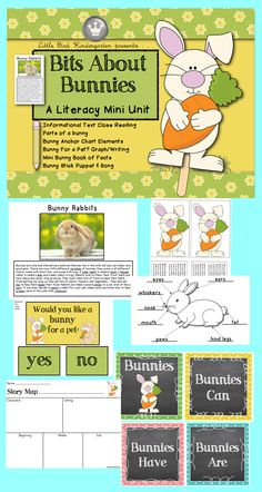 Bits About Bunnies! A Literacy Mini Unit  Informational Text Close Reading Activity, Writing Prompts, Parts of a Bunny, Stick Puppet & Song, Pet Bunny  Graph, Anchor Chart Elements $