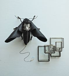 Leather moth saddled with a tiny silverware piece and leash - Mister Finch - ohmisterfinch.tumblr.com