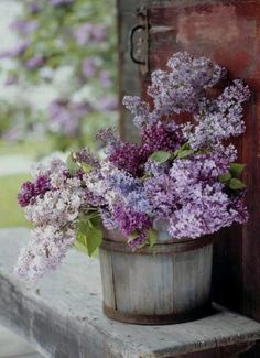 Lilacs in a Bucket spring flowers purple garden lavender lilac planter Ikebana, Deco Floral, Arte Floral, My Flower, Beautiful Flowers, Beautiful Bouquets, Beautiful Life, Simply Beautiful, Beautiful Images