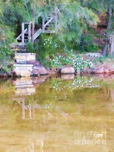 #STEPS TO THE #LAKE by #Kaye #Menner #Photography Quality Prints and Cards at: http://kaye-menner.artistwebsites.com/featured/steps-to-the-lake-kaye-menner.html