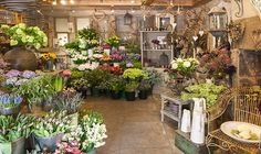 Our Gorgeous Flower Shop - The Willow Garden Florists - Hebden Bridge                                                                                                                                                                                 More