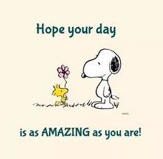 Charlie Brown with Snoopy. Charlie Brown Quotes, Charlie Brown And Snoopy, Peanuts Cartoon, Peanuts Snoopy, Snoopy Hug, Phrase Cute, Peanuts Quotes, Snoopy Quotes Love, Snoopy Pictures