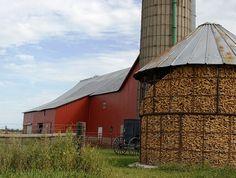 Amish Farm in Missouri