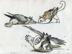 fantasy dog and cat - outstanding Fantasy Wesen, Fantasy Art, Mythical Creatures Art, Mythological Creatures, Creature Drawings, Animal Drawings, Dog Tumblr, Creature Design, Cute Drawings