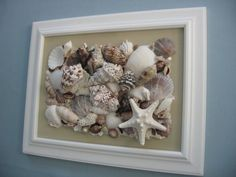 Seashell Collage  by seasideshells (etsy). Shells on painted canvas then framed.