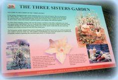 Three Sisters Companion Planting-Fungus Guy, Wikimedia Commons