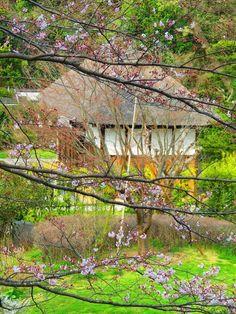 磐田市西貝塚にあります氣の泉整体所です。            「氣の泉」では、推掌、インディアンチャピサージ、リフレクソロジー、などの様々な技法を用いて、ひとりのお客様に対し、2名の整体師で施術しております。    丁寧に丁寧に、あなたの体を芯から癒します。