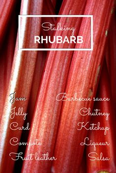 Rhubarb is the darling of spring. These sour stalks are techincally a vegetable, but their tart taste lends them to applications more common with fruit. How To Cook Rhubarb, Cooking Rhubarb, Cory Doctorow, Tart Taste, Rhubarb Recipes, Home Food, Preserving Food, Barbecue Sauce, Healthy Eating