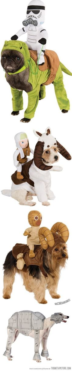 Star Wars Costumes for Dogs- I love these! but there is something so wrong with that! LOL!