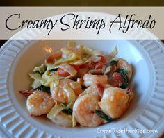 Come Together Kids: Creamy Shrimp Alfredo